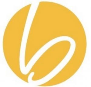 Briometrix Icon